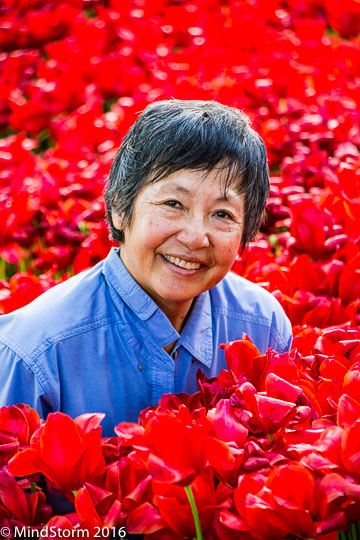 tulips Emirgan Park Evelyn