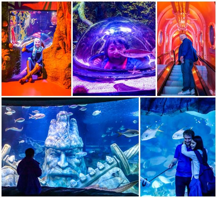 Sea Life Aquarium Istanbul Turkey people selfie
