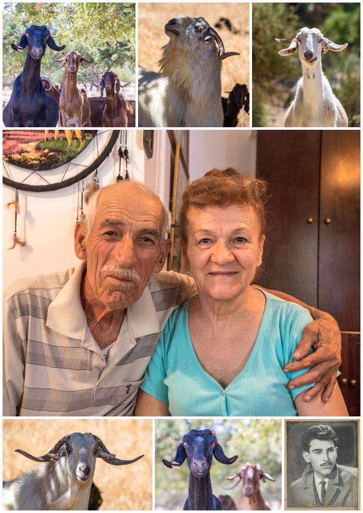 Cyprus Goat Herder