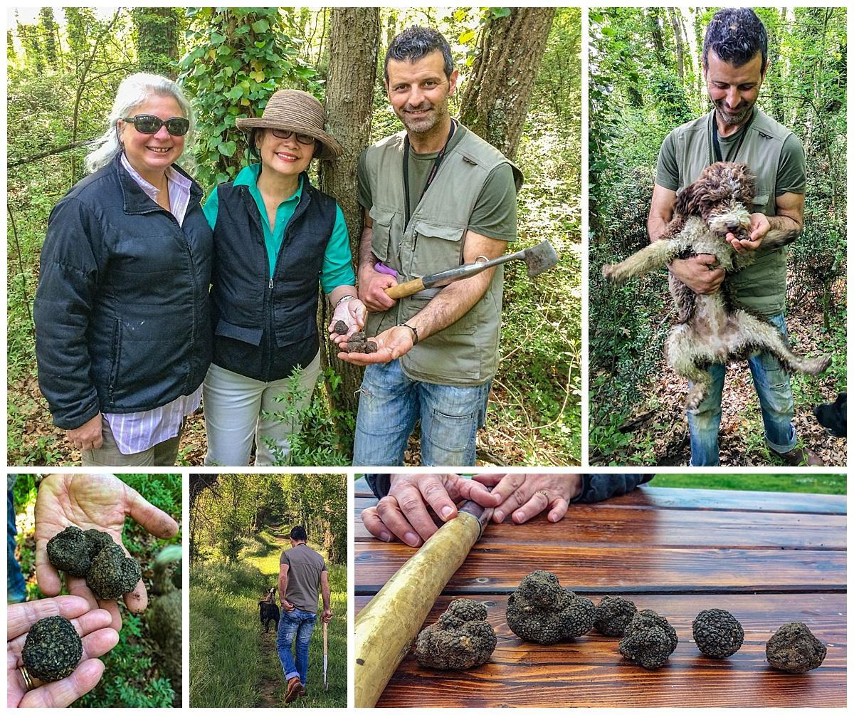 Tuscany Italy - truffle hunting