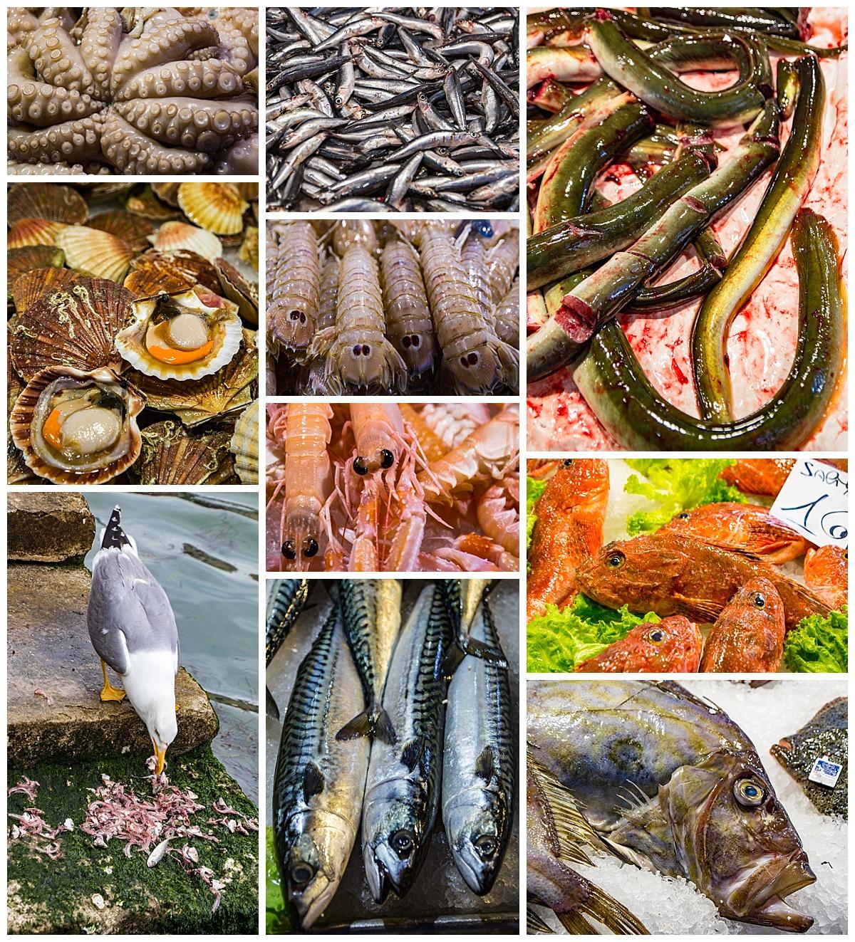 Venice, Italy - fish