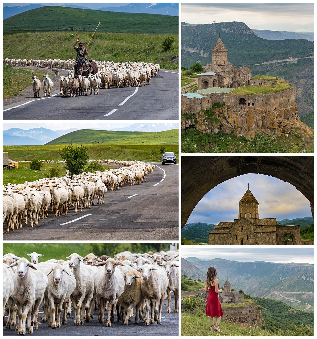 Goris, Armenia - sheep and Tatev monastery