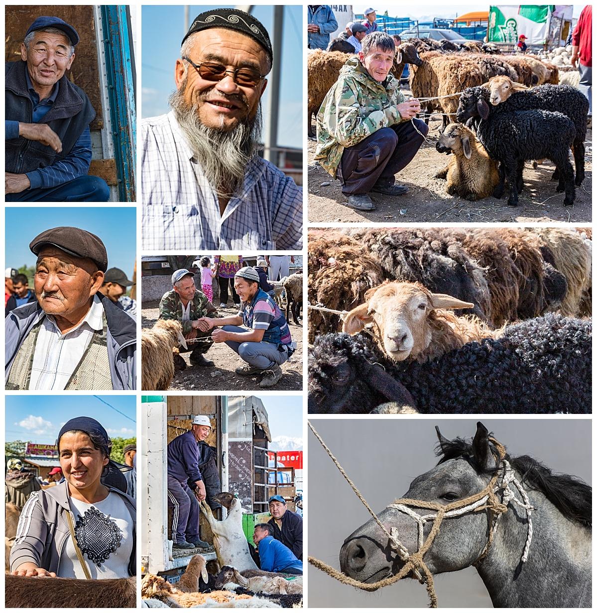 Issyk Kul, Kyrgyzstan - animal market