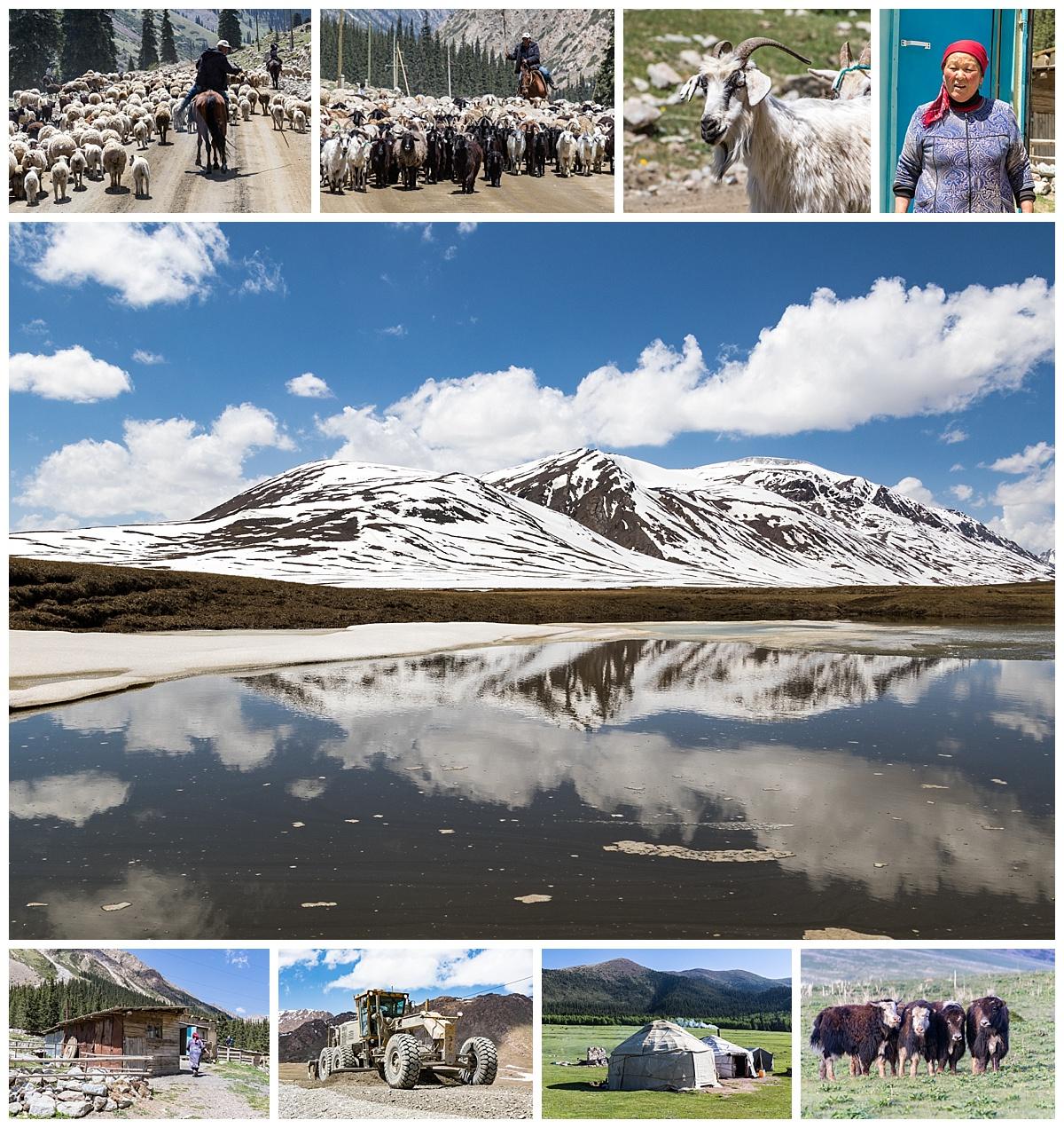 Issyk Kul, Kyrgyzstan - sheep herder