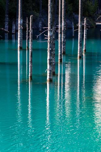 Kazakhstan - Kolsoi lake trees realistic