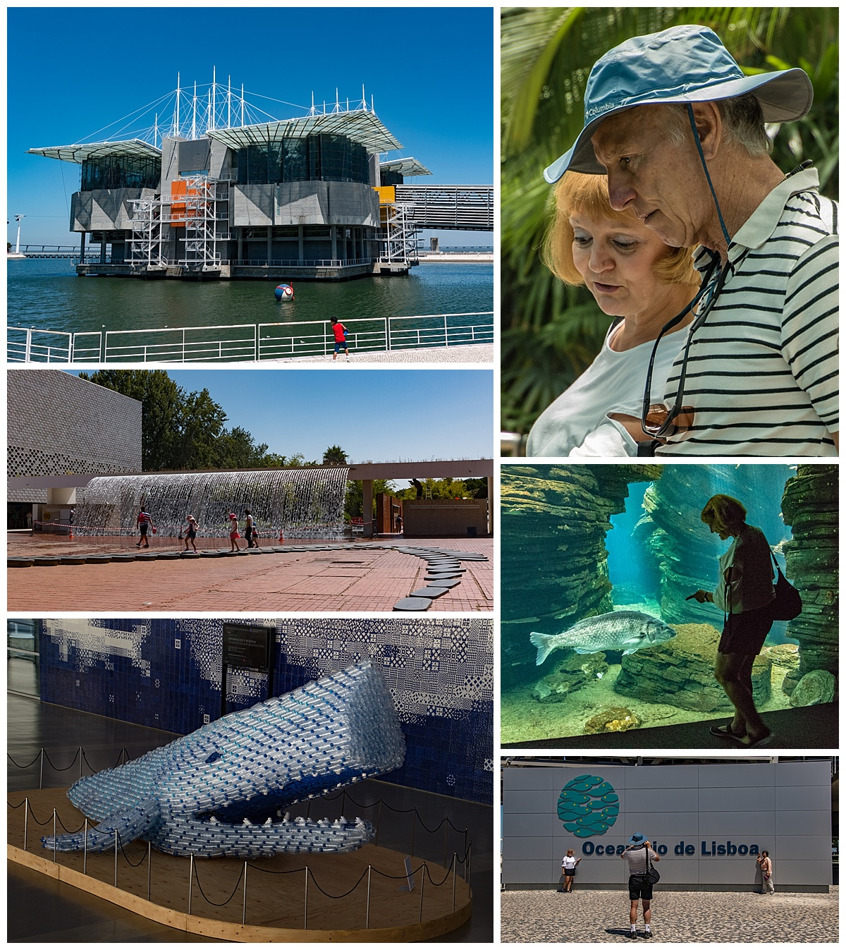 lisbon oceanarium 1- building and friends