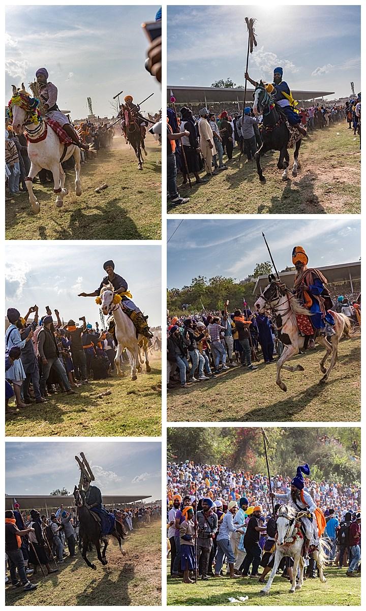 Punjab, India, Hola Mohalla 2018 - horses