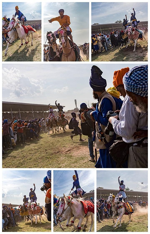 Punjab, India, Hola Mohalla 2018 - horses standing